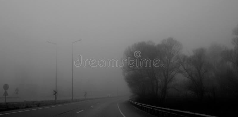 En dimmig väg med träd på vänstra sidan fotografering för bildbyråer