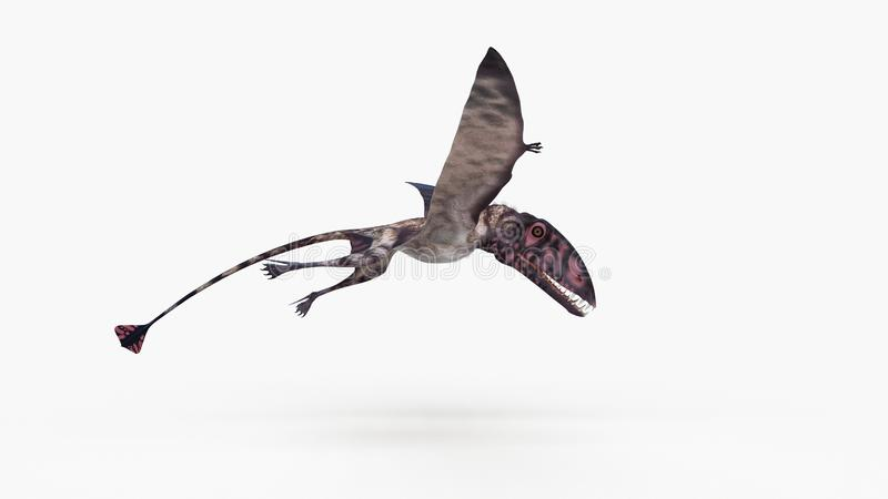 en dimorphodon royaltyfri illustrationer