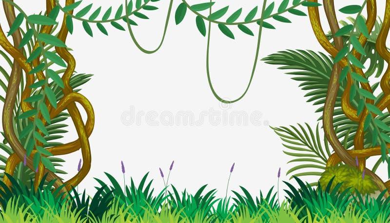 En djungelmall med vinrankan stock illustrationer