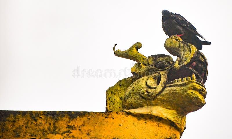 En duva som sitter på en drakemunstruktur i Bhutan royaltyfria foton