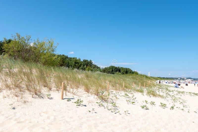 En dyn på stranden av Zempin royaltyfria foton