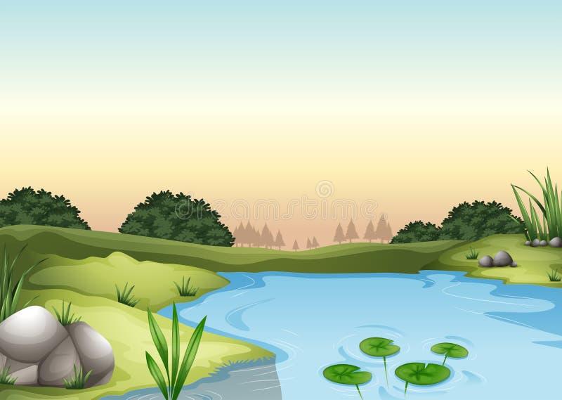 En ecosytem royaltyfri illustrationer