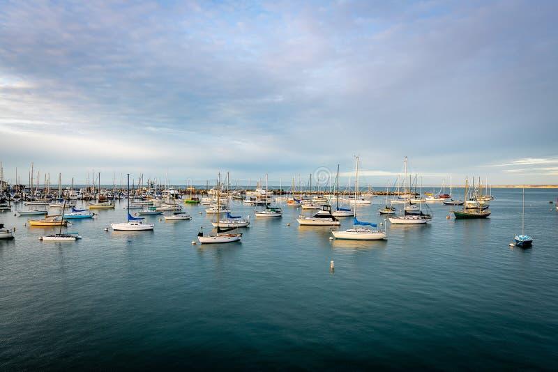 En eftermiddag i Monterey County royaltyfri fotografi
