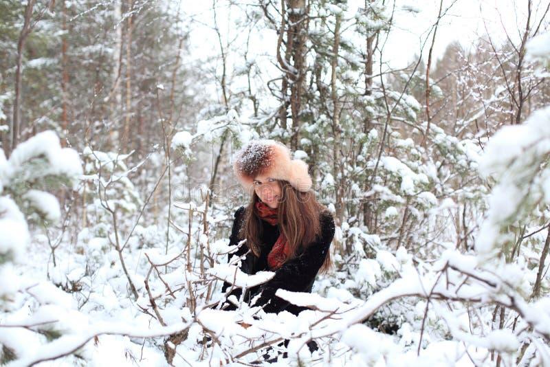 Download En el bosque del invierno foto de archivo. Imagen de caminata - 44850918