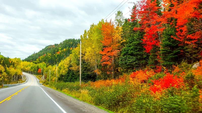 En el camino, colores del otoño, Tadoussac Quebec imagen de archivo