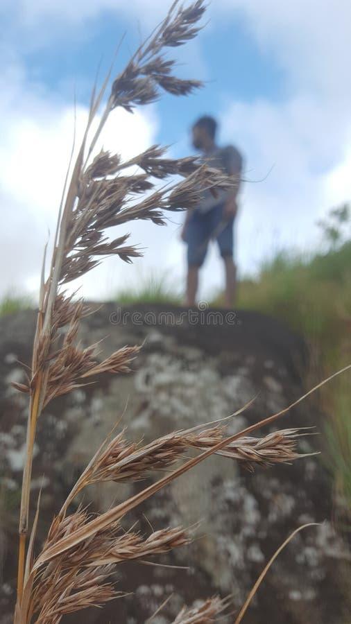 En el tecleo del peake de Adams - Sri Lanka imagen de archivo libre de regalías