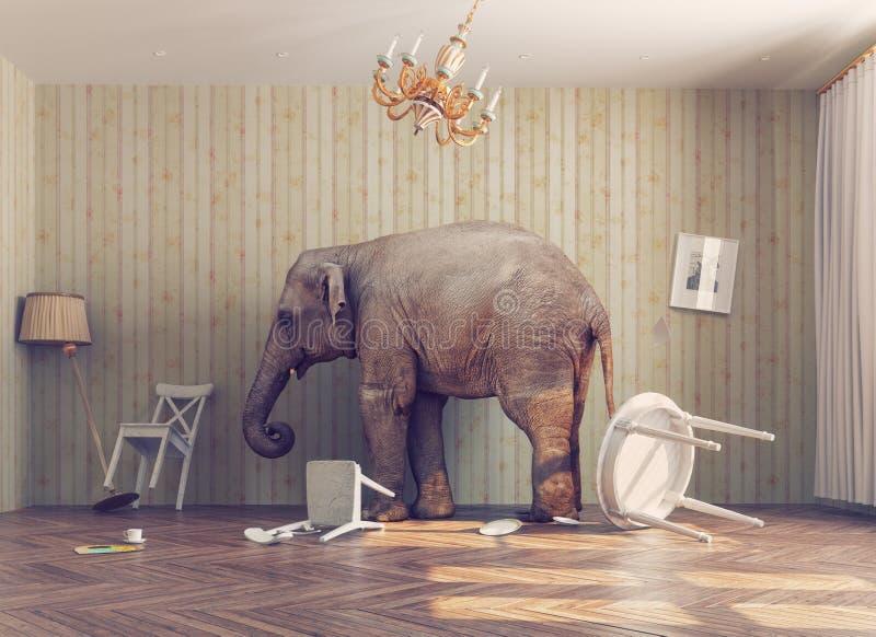 En elefant i ett rum royaltyfri illustrationer