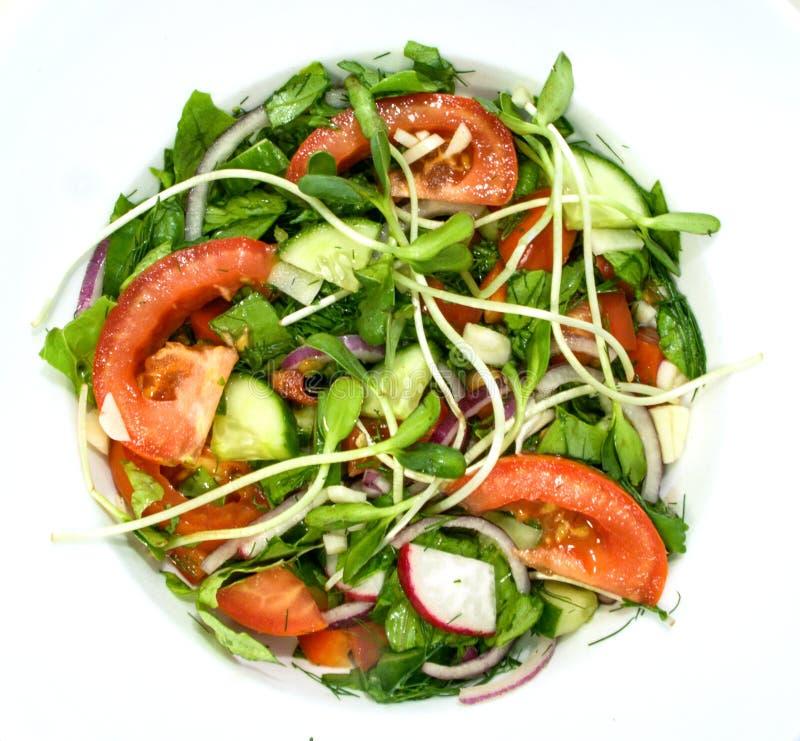 En enkel sallad av tomater, gurkor, röda lökar, peppar, rädisa, dill, basilika, vitlök och kryddat med citronjuice, olivolja a arkivbild