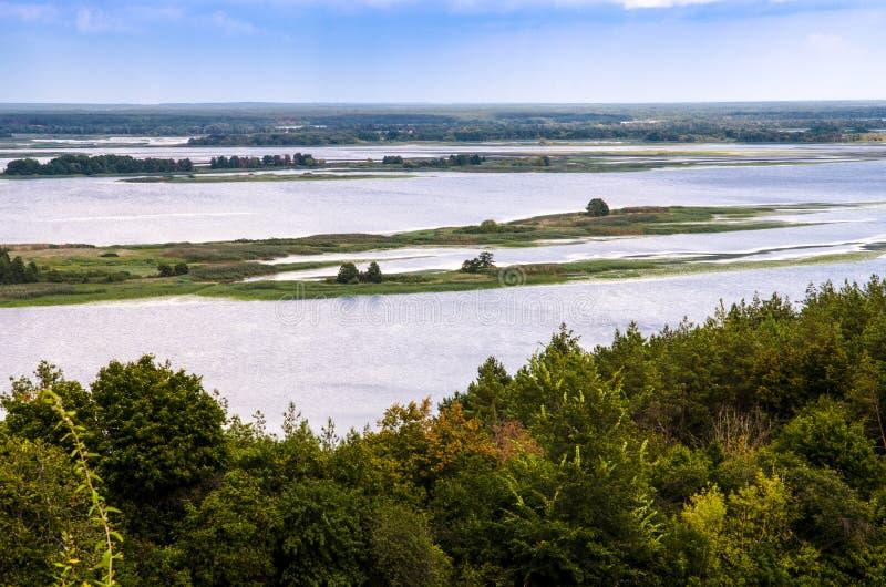 En enorm flod med öar var träd och gräs växer mot den blåa himlen royaltyfria foton