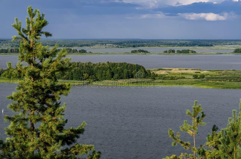 En enorm flod med öar var träd och gräs växer mot den blåa himlen arkivfoto