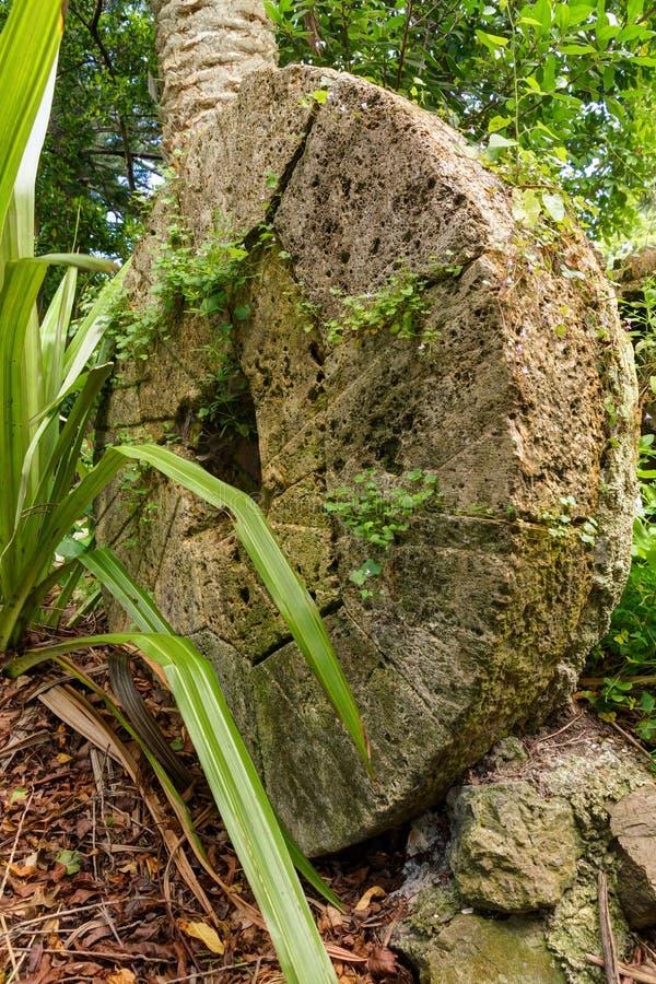 En enorm gammal kvarnsten som vilar i en trädgård arkivbild