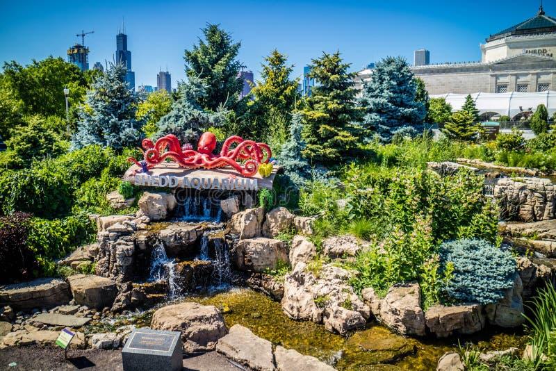 En enorm offentlig sk?rm av vattenvarelser i Chicago, Illinois royaltyfria bilder