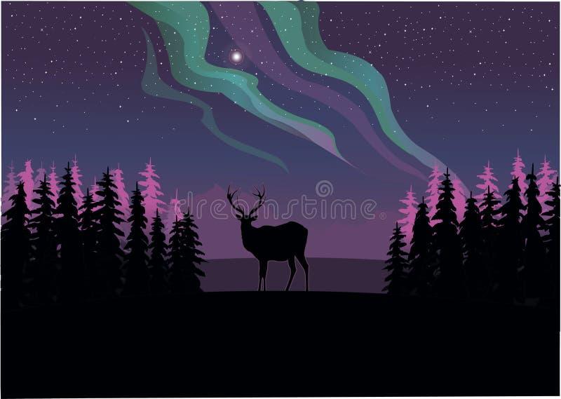 En ensam hjort som stirrar på de nordliga ljusen stock illustrationer