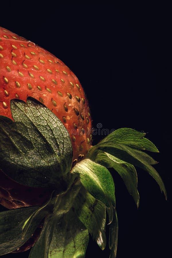 En exotisk röd jordgubbe royaltyfria bilder