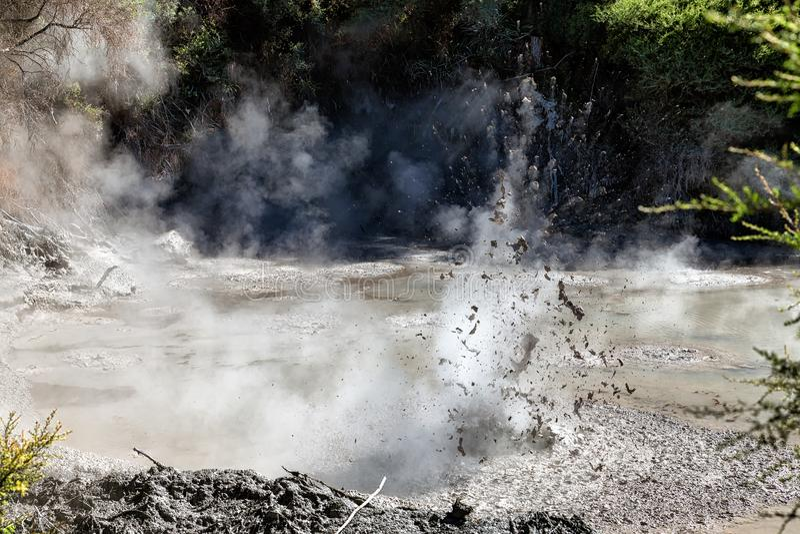 En exploderande varm gyttjapöl i Wai-O-Tapu den termiska underland, Rotorua royaltyfri fotografi