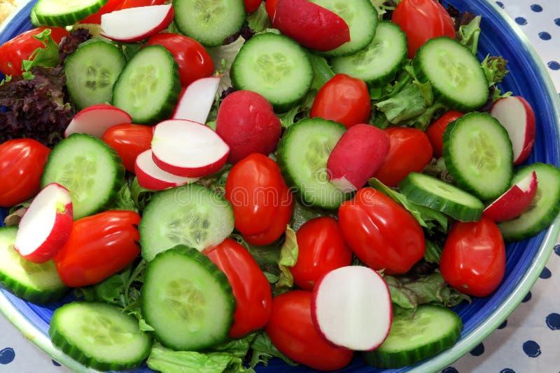 En färgglad och sund maträtt royaltyfri fotografi
