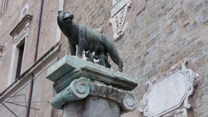 `en För `-Capitoline varg, royaltyfri fotografi