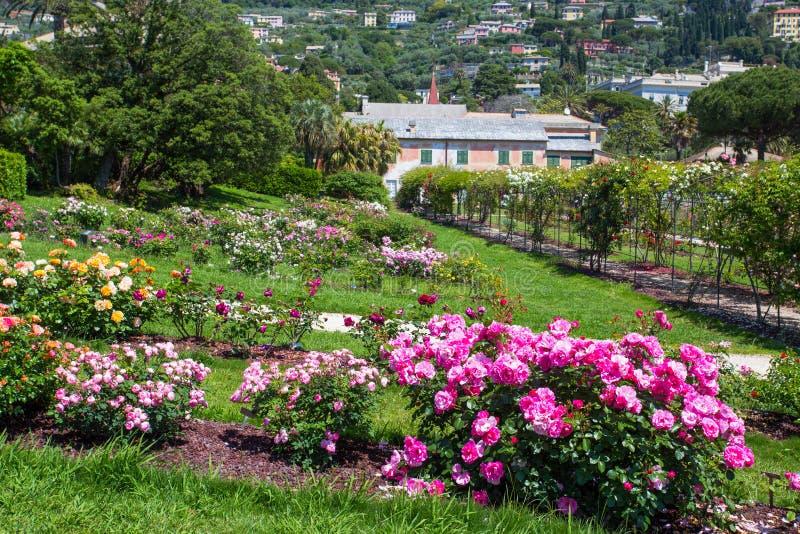 `en För Il Roseto för rosträdgård` i Genoa Nervi, inom Genoa Nervi Parks, Italien royaltyfri bild