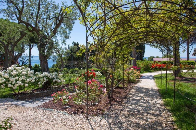 `en För Il Roseto för rosträdgård` i Genoa Nervi, inom Genoa Nervi Parks, Italien royaltyfria foton