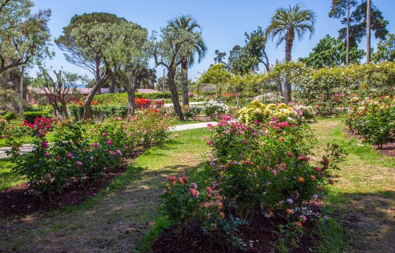 `en För Il Roseto för rosträdgård` i Genoa Nervi, inom Genoa Nervi Parks, Italien fotografering för bildbyråer