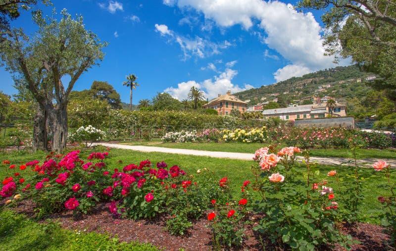 `en För Il Roseto för rosträdgård` i Genoa Nervi, inom Genoa Nervi Parks, Italien arkivbild