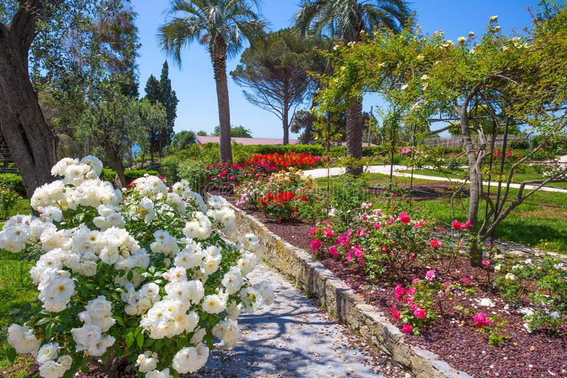 `en För Il Roseto för rosträdgård` i Genoa Nervi, inom Genoa Nervi Parks, Italien royaltyfria bilder