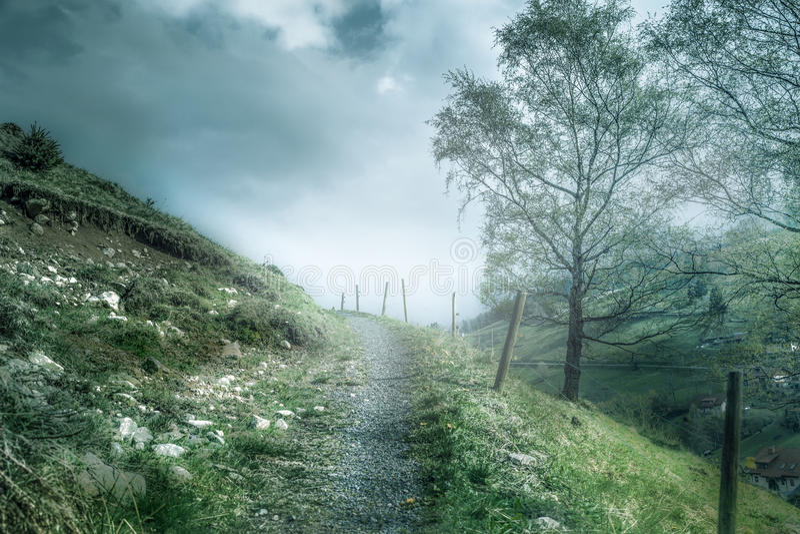 En förkylning och en dimmig vandringsled royaltyfri foto