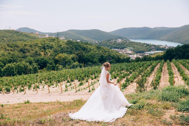 En förrymd brud går i ett öde fält, beundrar vingårdar och berg och känner sig fritt En ung flicka som in avgås royaltyfri foto