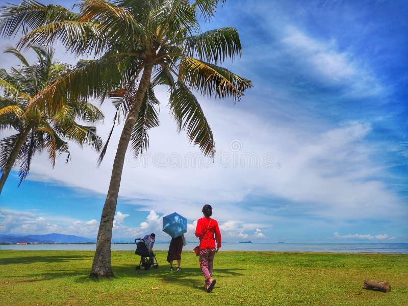 En familjutflykt och en kokospalm i den Tanjung Aru stranden, Kota Kinabalu med den härliga blåa himlen över på solig dag royaltyfria foton