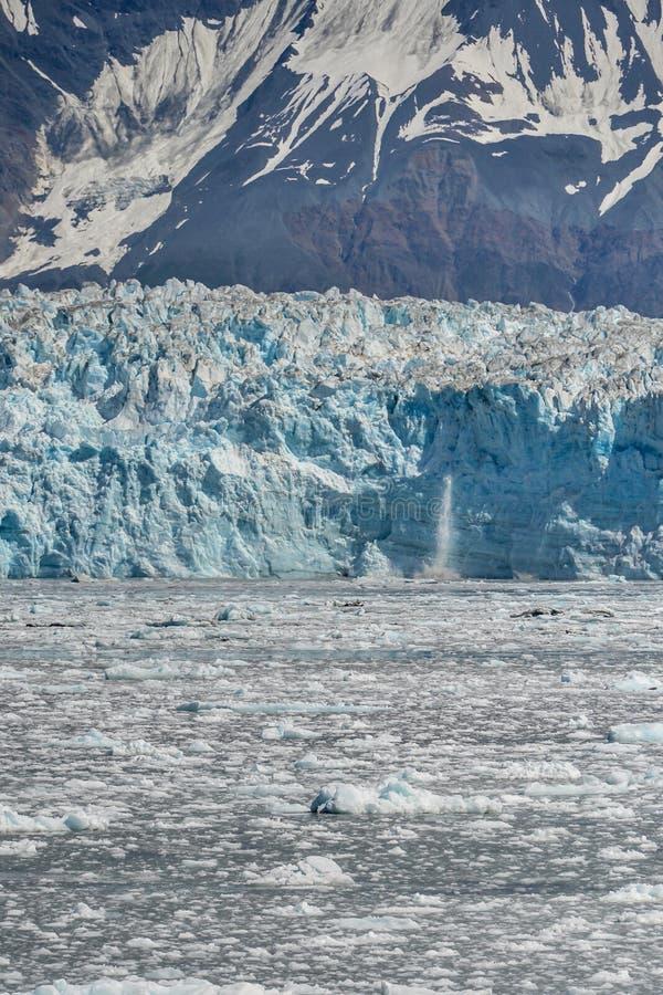 En fantastisk glaciär i Alaska fotografering för bildbyråer