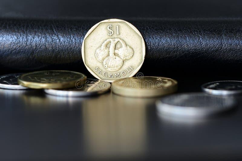 En fijian dollar p? en m?rk bakgrund arkivfoton
