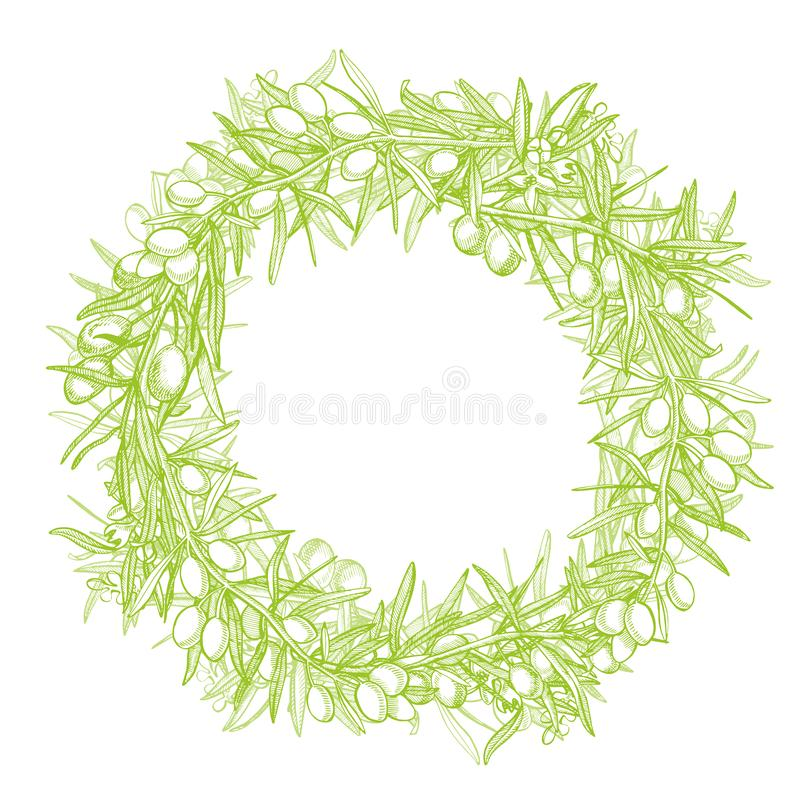 En filial av mogna oliv ?r saftigt som h?lls med olja Design f?r bondemarknadsmeny Affisch f?r organisk mat tecknad handtappning royaltyfri illustrationer