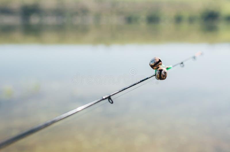 En fishermansstångrulle och klockor royaltyfri foto