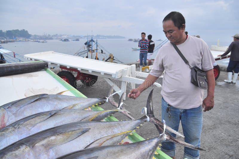 En fiskare markerar hans tonfisk på hamnstaden arkivbilder