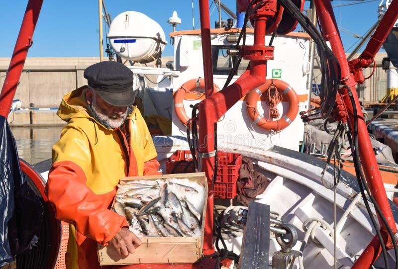 En fiskare med en fiskask inom en fiskebåt royaltyfri fotografi