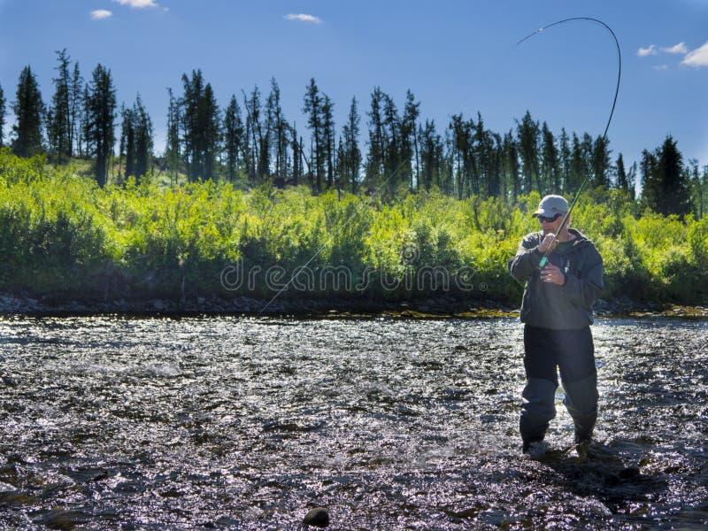 En fiskare på floden royaltyfri foto