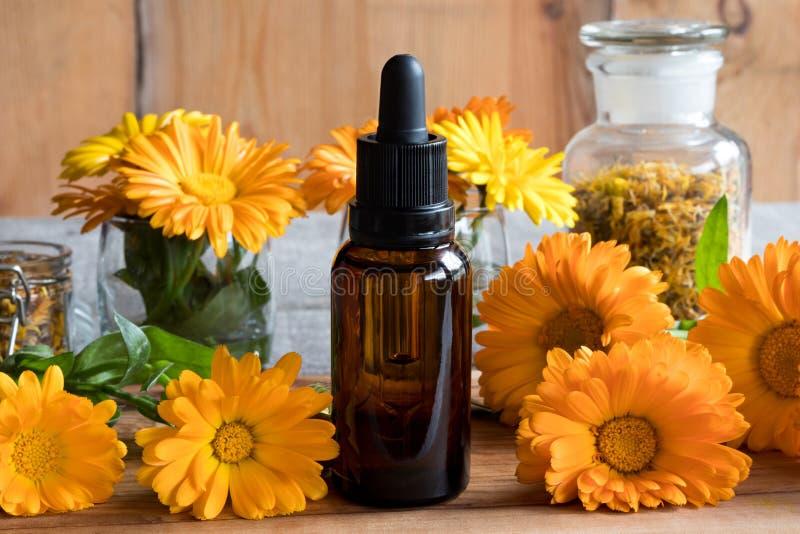 En flaska av nödvändig olja för calendula med calendulaen blommar royaltyfri bild