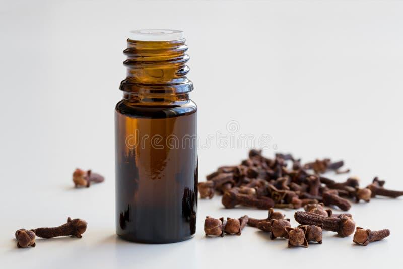 En flaska av nödvändig olja för kryddnejlika med torkade kryddnejlikor på vit backg royaltyfri fotografi