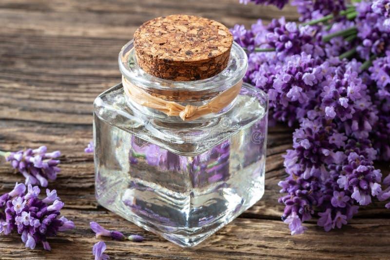 En flaska av nödvändig olja för lavendel med lavendelris fotografering för bildbyråer