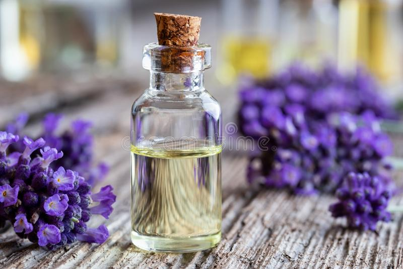 En flaska av nödvändig olja för lavendel med ny lavendel blommar royaltyfri foto