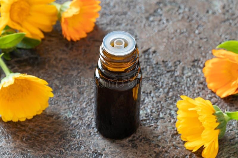 En flaska av n?dv?ndig olja f?r calendula med calendulaen blommar royaltyfri foto