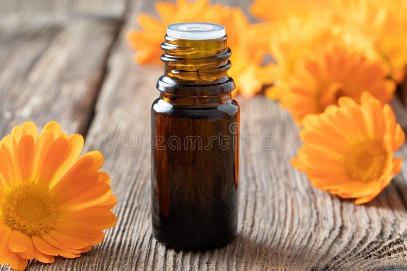 En flaska av n?dv?ndig olja f?r calendula med calendulaen blommar royaltyfri fotografi