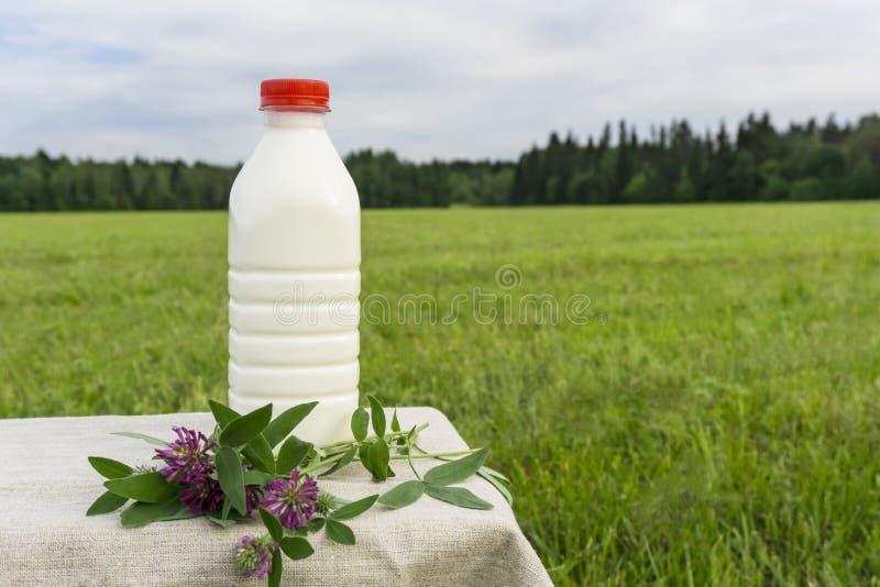 En flaska av nytt mjölkar i en äng royaltyfria bilder