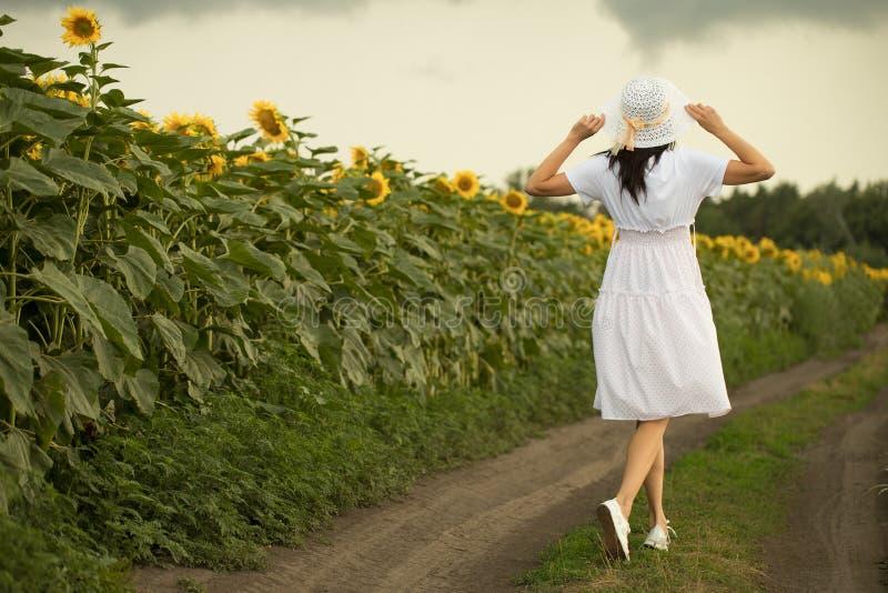En flicka går på ett fält med solrosor arkivfoto