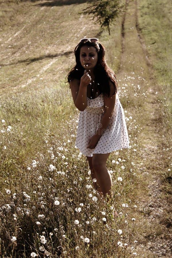 En flicka i den vita klänningen som blåser maskrosen royaltyfri bild
