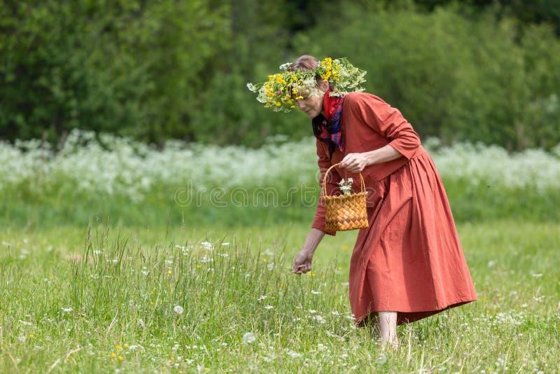 En flicka i en nationell dräkt och en krans på hennes huvud samlar bär i en korg, på en grön gräsmatta in royaltyfria foton
