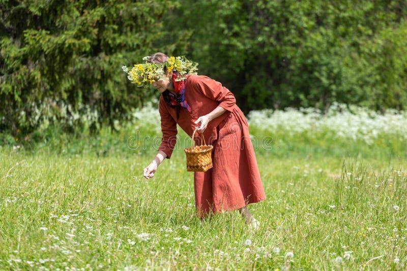 En flicka i en nationell dräkt och en krans på hennes huvud samlar bär i en korg, på en grön gräsmatta in royaltyfri bild