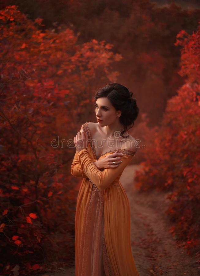 En flicka i en tappningklänning fotografering för bildbyråer
