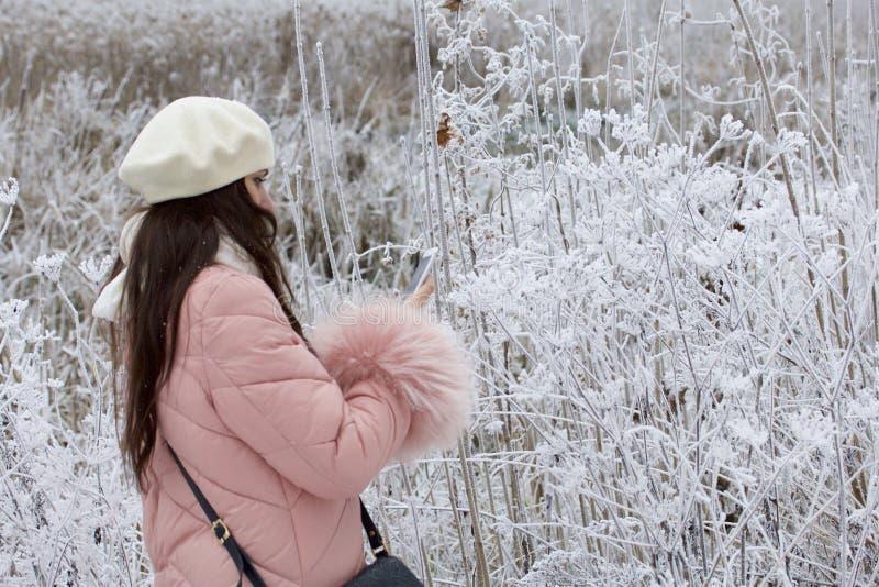En flicka i vinterkläderfotografier av buskar som täckas med härlig rimfrost royaltyfria foton