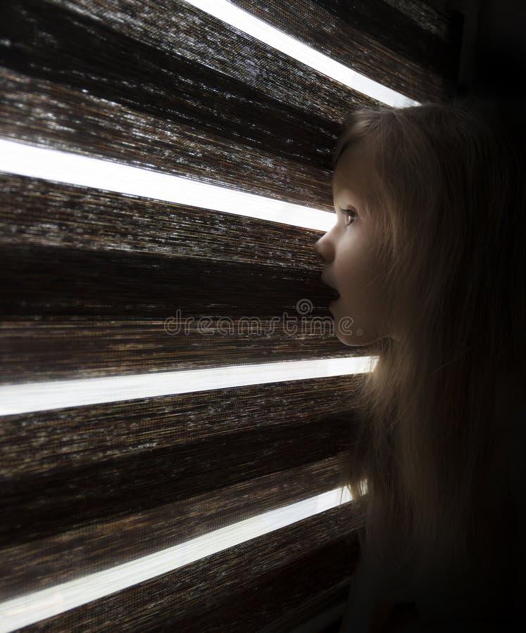 En flicka kikar till och med en mörk rullgardin royaltyfria bilder
